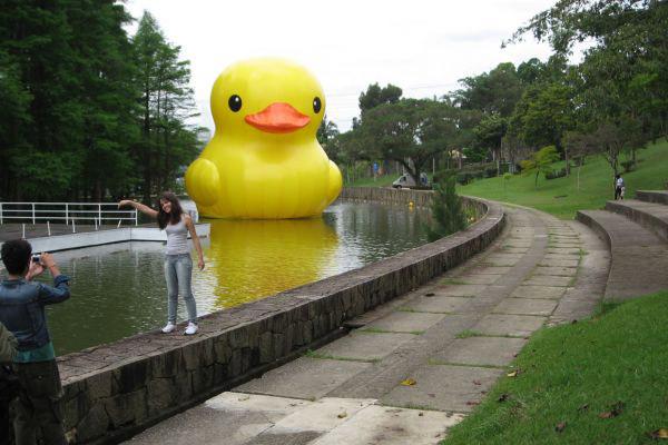 Floating Duck in SAO PAULO by Florentijn Hofman